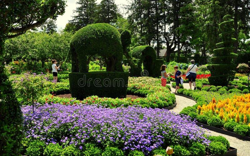 portsmouth ri green animals topiary gardens stock editorial - Green Animals Topiary Garden