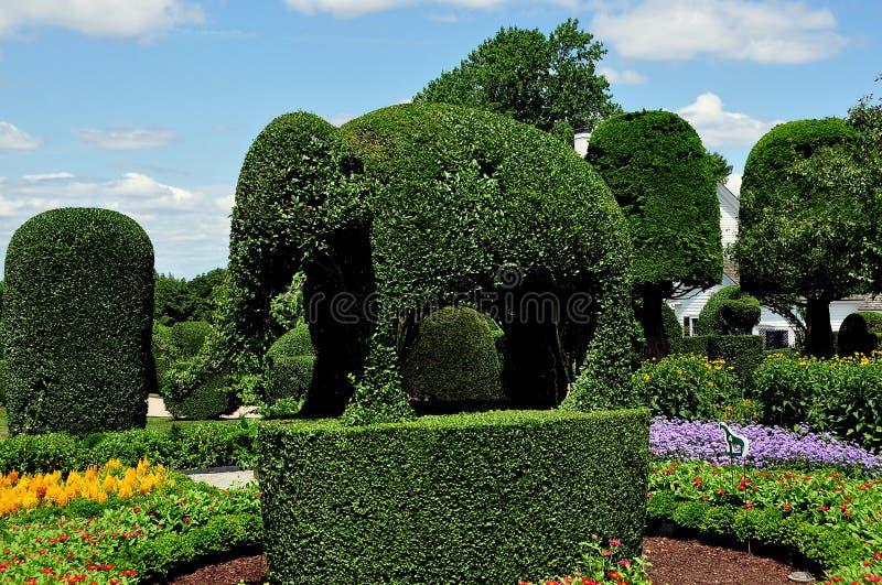 Portsmouth, RI: Topiary del elefante en los animales verdes imagenes de archivo