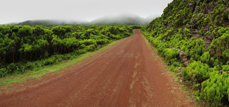 Portugal - Azores - Terceira - Biscoito da Ferraria royaltyfria bilder