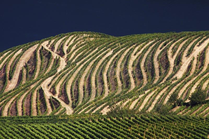 Portugal: Douro river valley stock photo