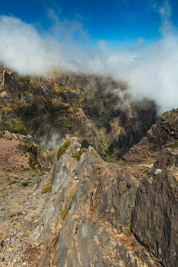 portugal Isla de Madeira foto de archivo libre de regalías