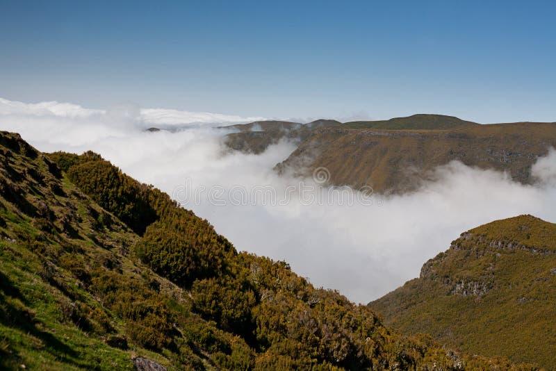 portugal Isla de Madeira fotos de archivo
