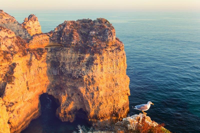 Portugal kust royaltyfria bilder