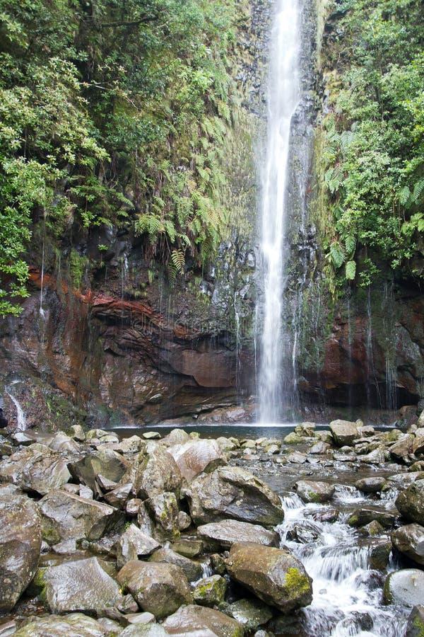Portugal, Madeira, cascada 25 Fontes cerca de Rabacal imagen de archivo libre de regalías