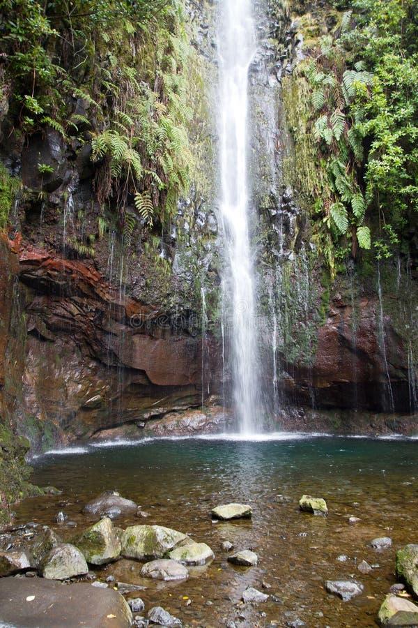 Portugal, Madeira, cascada 25 Fontes cerca de Rabacal fotografía de archivo