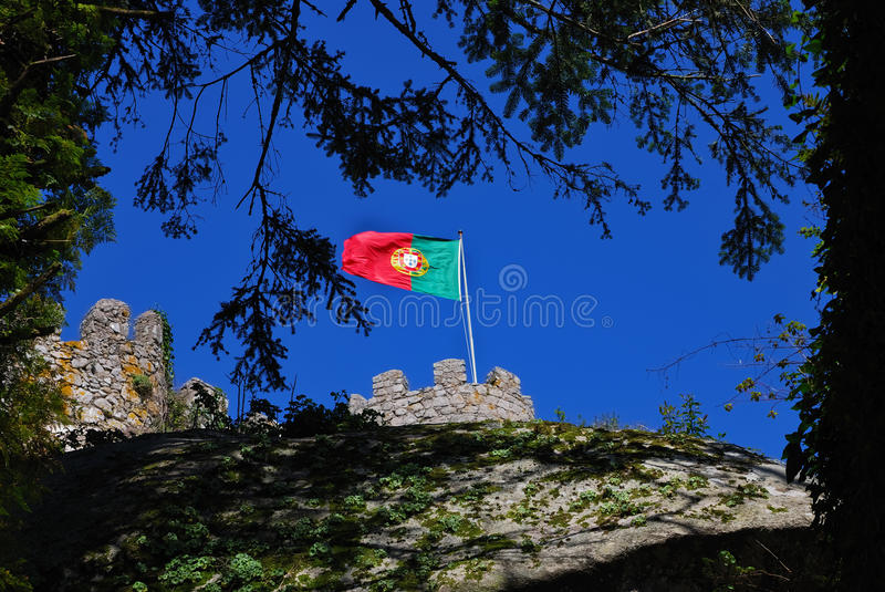 Portugal's flag royalty free stock image
