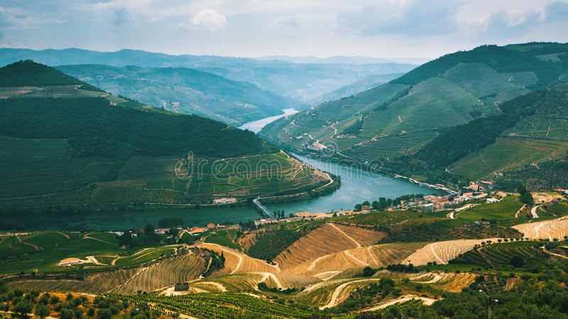 Portugal. Top view of river, and the vineyards are on a hills. royalty free stock photo