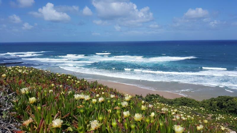 Portugalczyk plaże Niebo i ocean obrazy royalty free