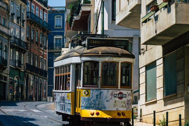 Portugals färger royaltyfria bilder