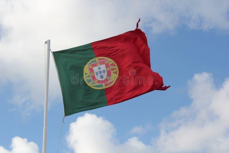 Portugiesische Flagge stockbild