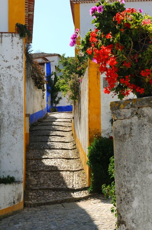 Portugiesische Gasse und Blumen lizenzfreie stockbilder