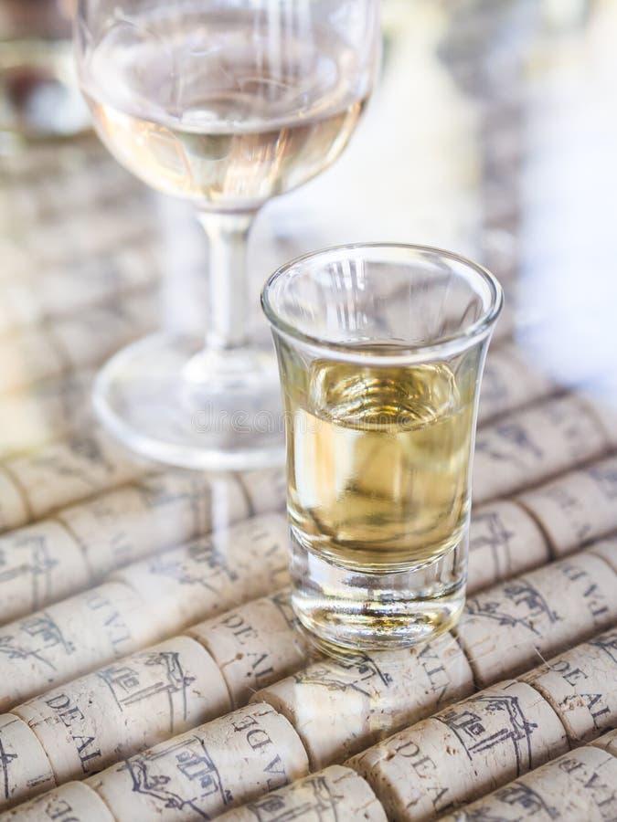 Portugisiskt exponeringsglas för skottet för moscatelvininaen erbjöd under vinavsmakning i Quinta de Alcube i den Setubal regione arkivfoton