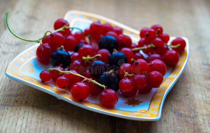 Porzeczkowe jagody na talerzu na stole obraz royalty free