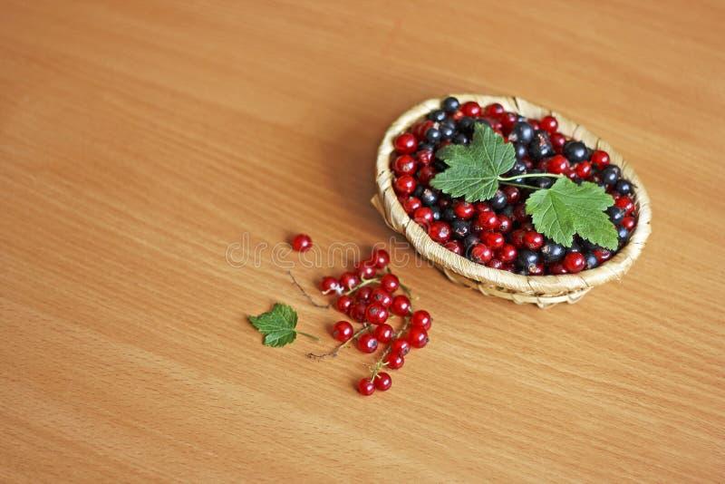 Porzeczkowe jagody w koszu zdjęcia royalty free