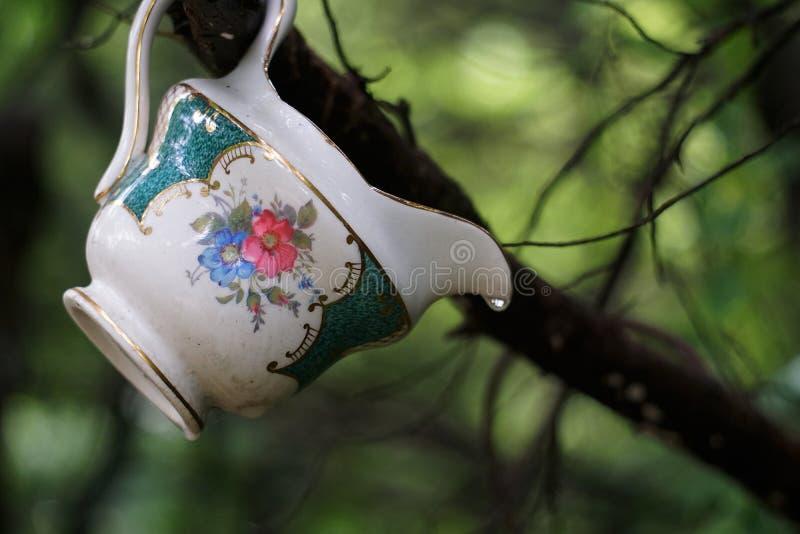 Porzellan im Wald stockfotos