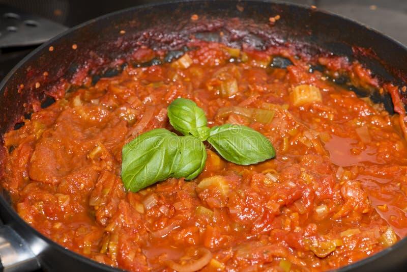 Porzione di salsa al pomodoro cucinata fresca fotografia stock libera da diritti