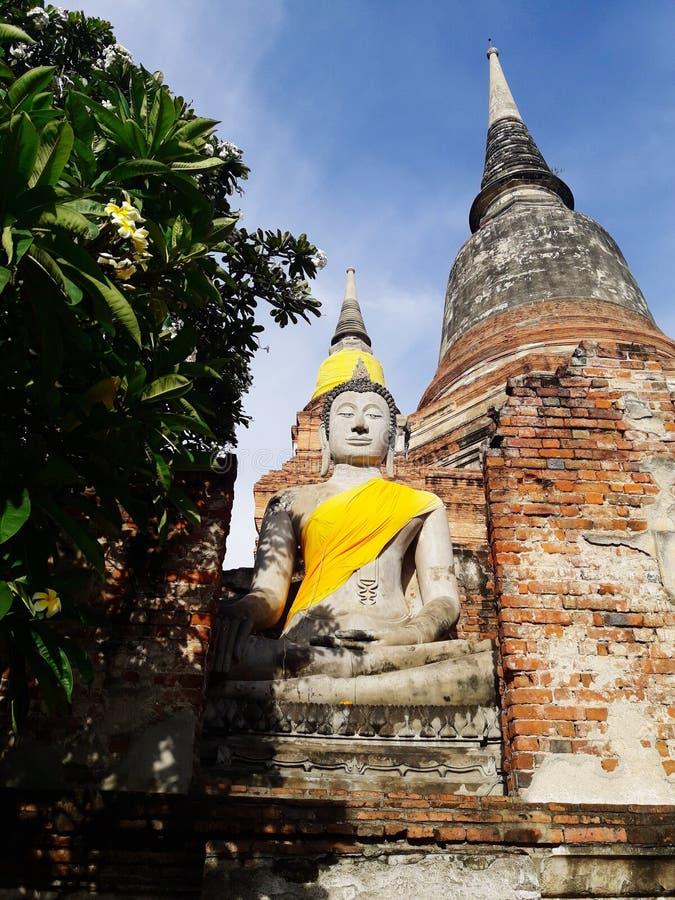 Posąg starożytnego Buddy w Ajutthaya, Tajlandia zdjęcia stock