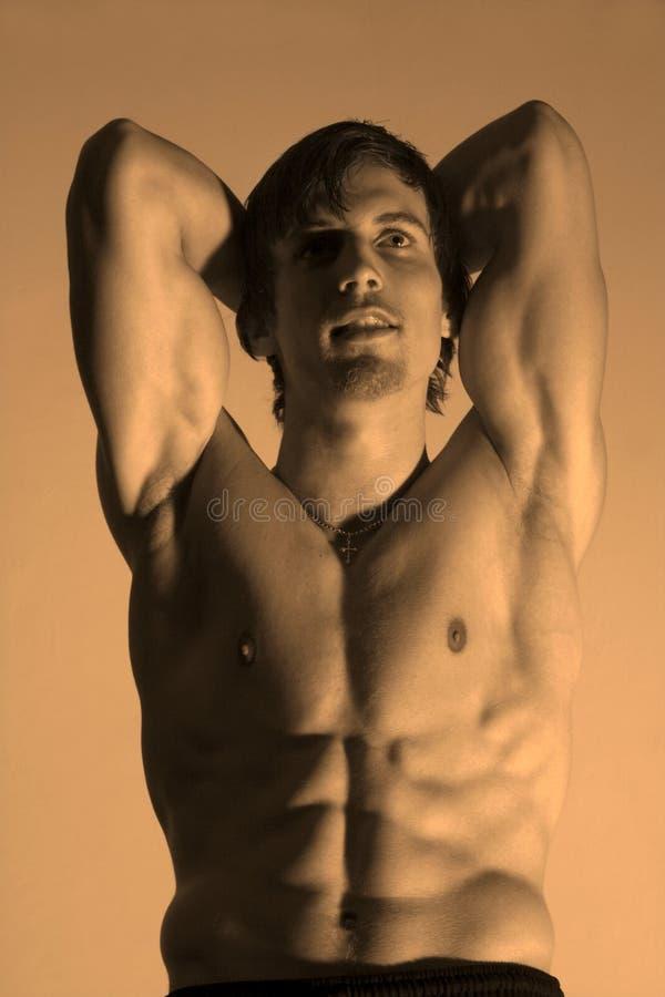Posa del bodybuilder fotografie stock libere da diritti