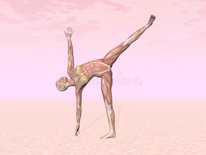 Posa di yoga della mezza luna per la donna con il muscolo visibile illustrazione vettoriale