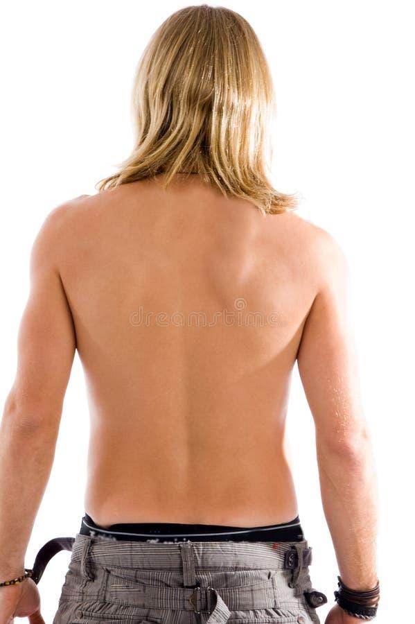 Posa posteriore del maschio di misura fotografia stock