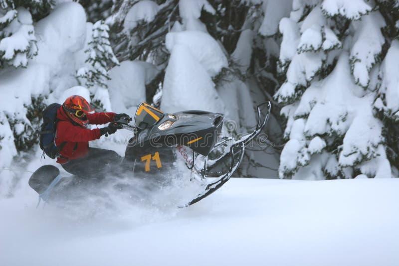 Posatoio di Snowmobile fotografia stock libera da diritti