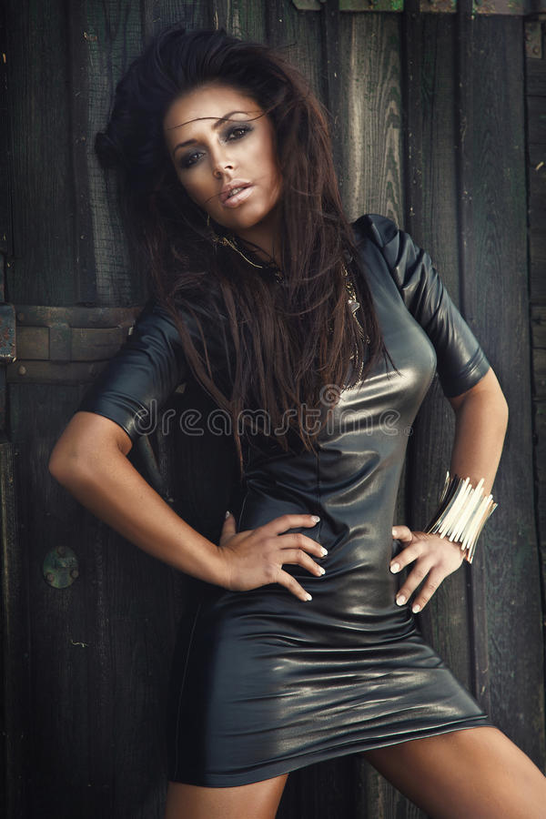 Pose à la mode de beauté de brune photo libre de droits