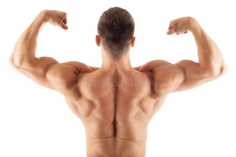 Pose belle musculaire d'homme photos libres de droits