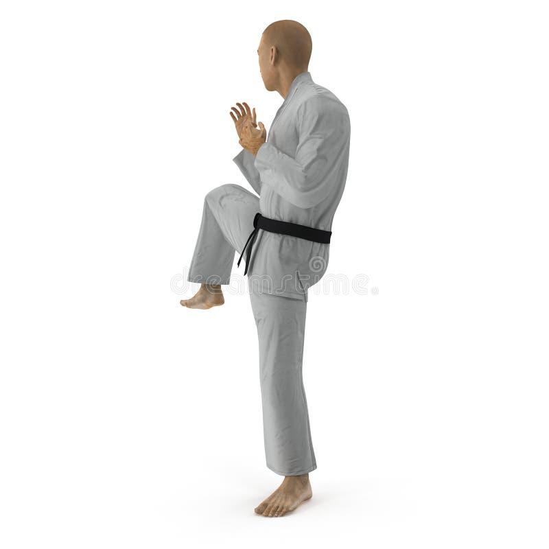 Pose blanche de combat de combattant de karaté d'isolement sur le blanc illustration 3D illustration de vecteur