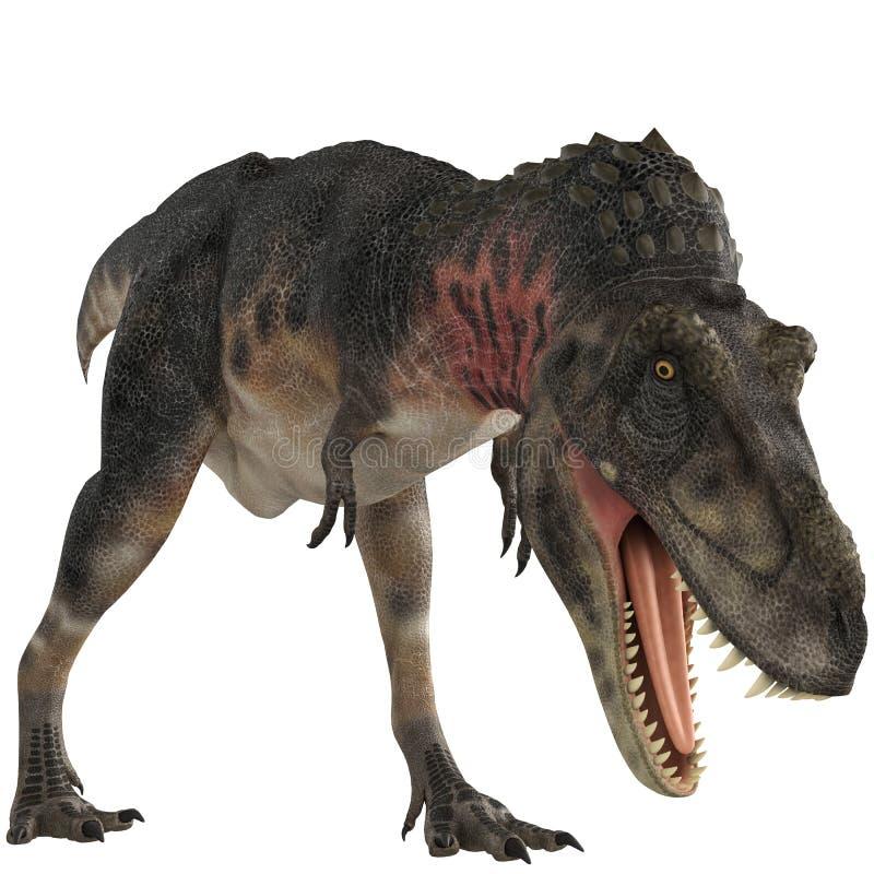 Pose comer de Tarbosaurus ilustração royalty free