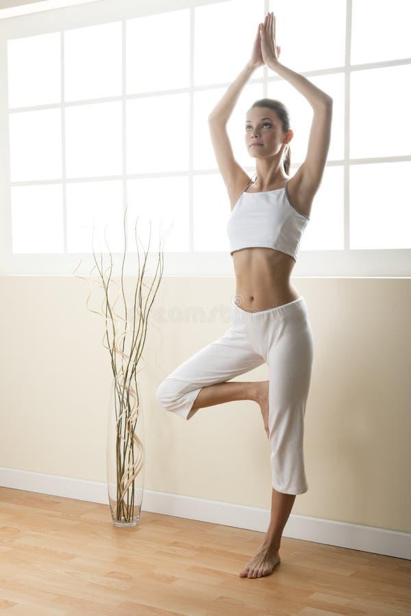 Pose da árvore da ioga foto de stock