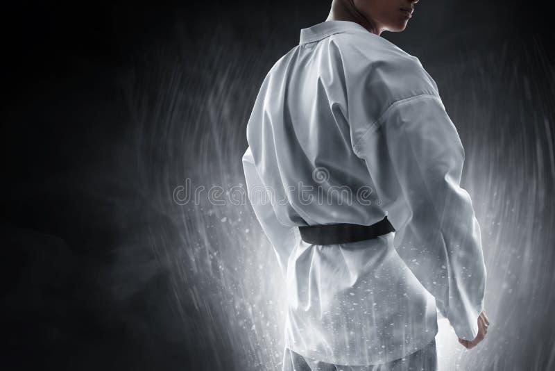 Pose de combat de combattant d'arts martiaux photos libres de droits