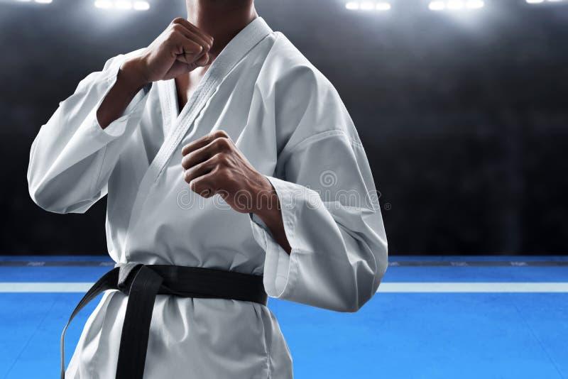 Pose de combat de combattant d'arts martiaux photo stock