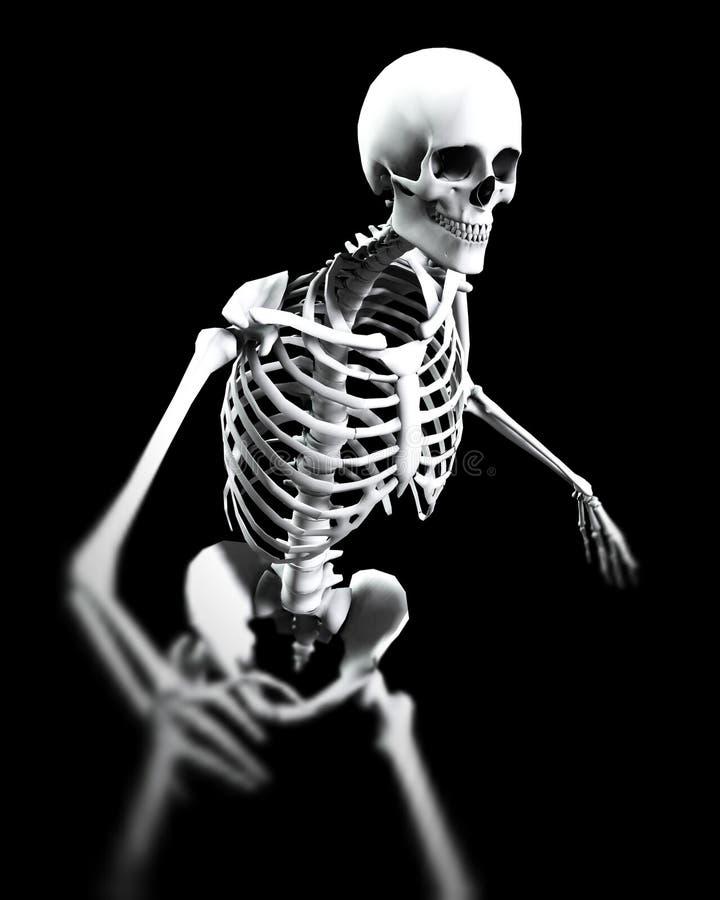 Pose do osso ilustração do vetor