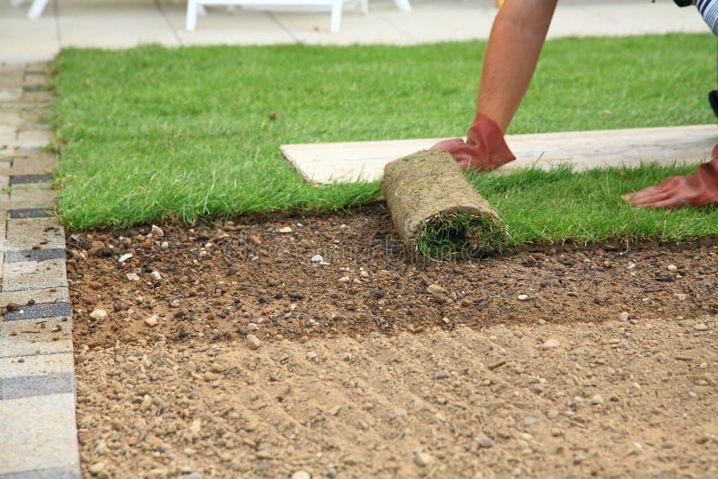 Pose du gazon pour la pelouse neuve photos stock