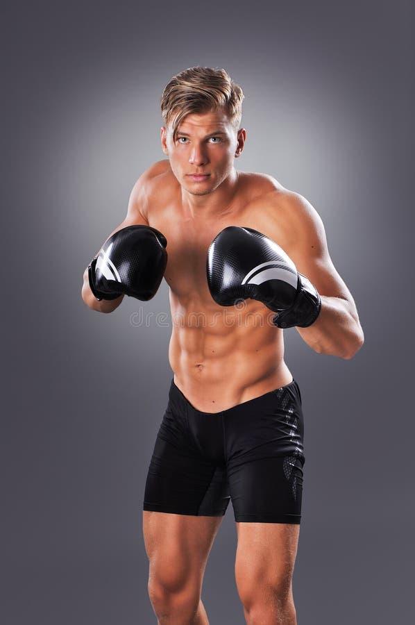 Pose musculaire belle de combattant Concept d'arts martiaux images libres de droits