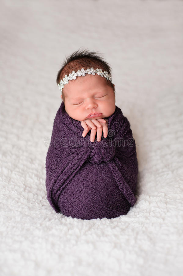 Posed Newborn Girl Sleeping in a Purple Swaddle. Sleeping, nine day old newborn baby girl swaddled in a purple wrap. Shot in the studio on a white blanket stock photos