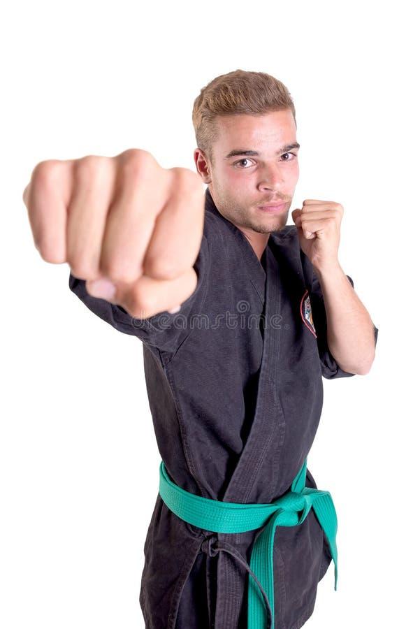 Posera för karatekämpe arkivfoto