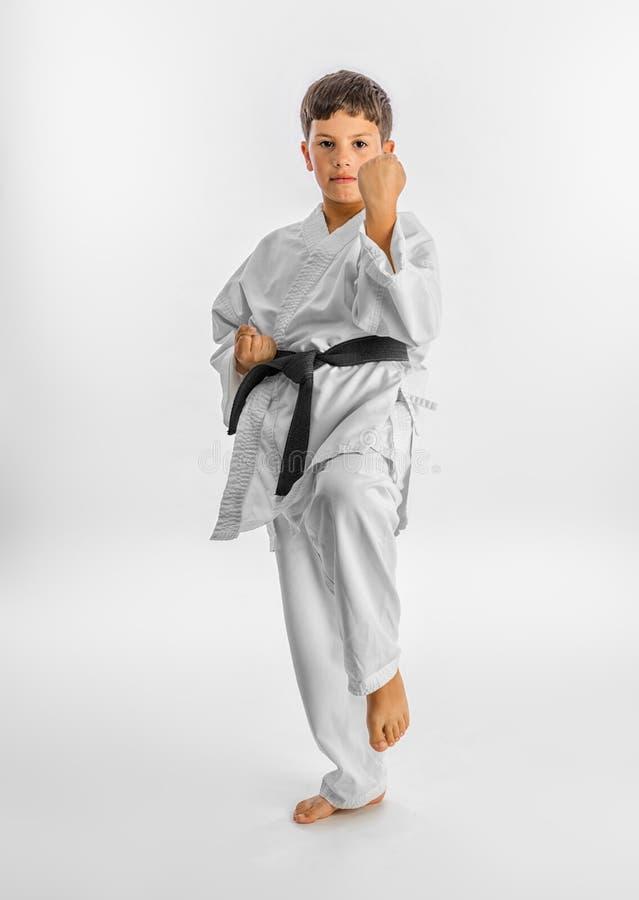 posera för karateunge arkivbild