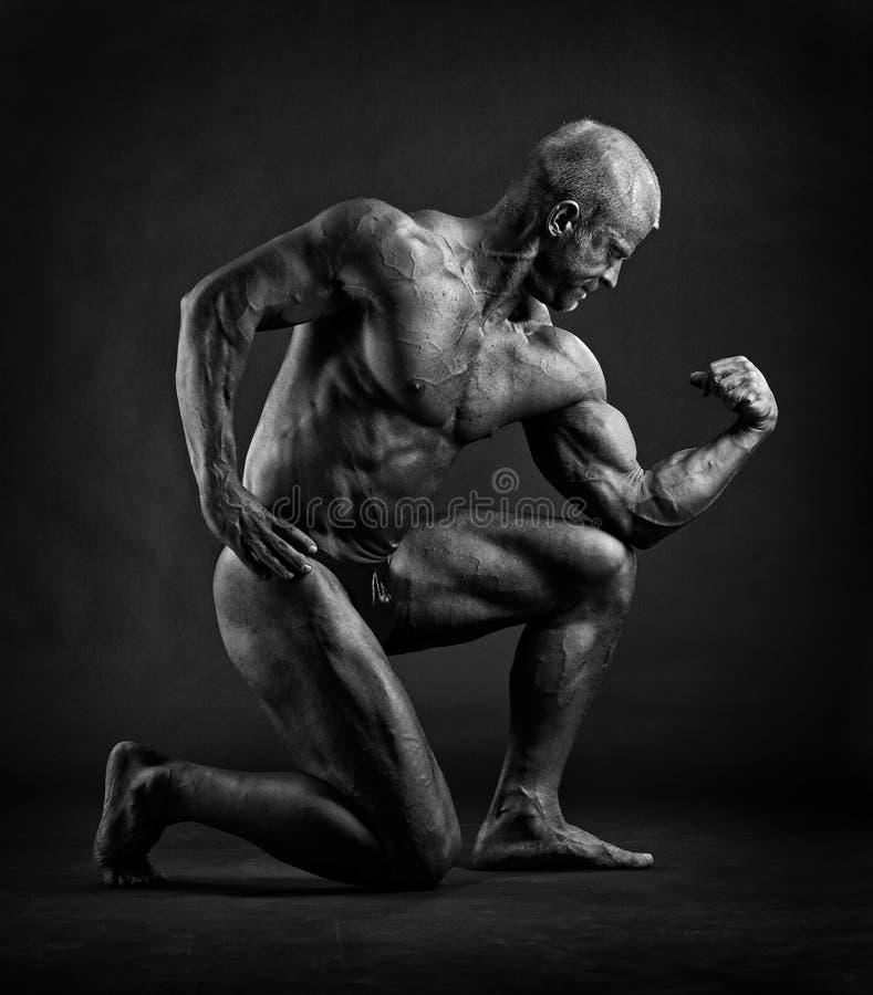 Posera för kroppsbyggare arkivbild