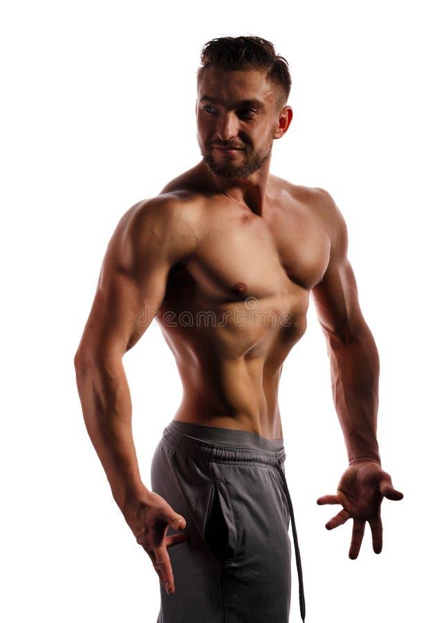 posera för kroppsbyggare Manlig kropp för skönhet arkivfoto