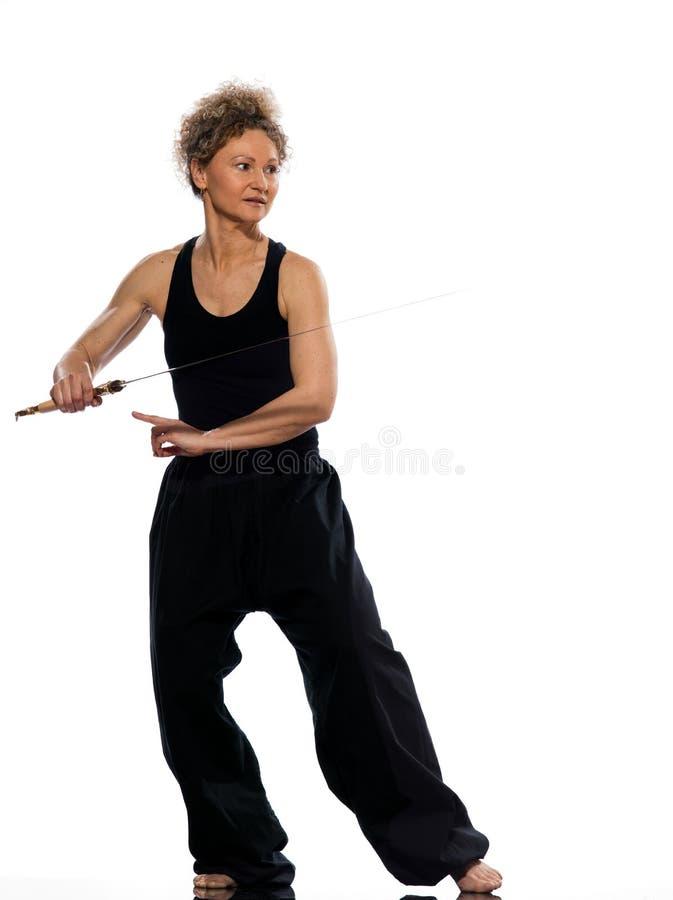 Poserar chuan tadjiquan ställing för kvinnatai-chi position arkivbild