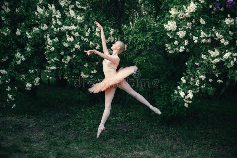 Poserar klassisk balett för ballerinadansen utomhus i blommaländer arkivfoton
