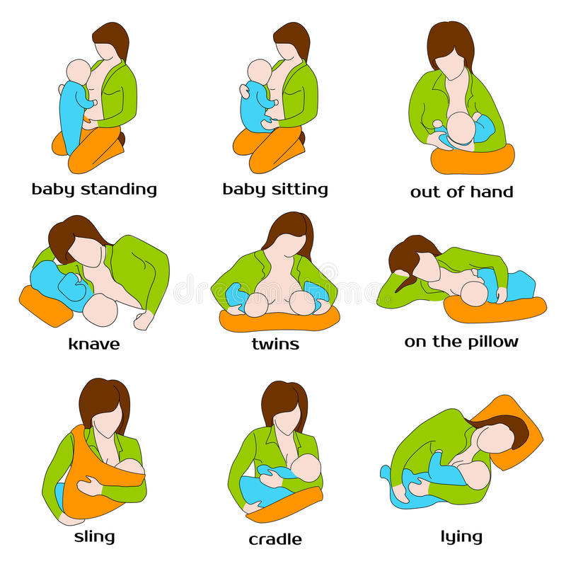 Poses for breastfeeding. Woman breastfeeding a. Child in different poses. Baby standing, sling, twins, on the pillow, baby sitting, out of hand. Woman vector illustration