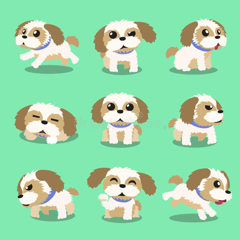 Poses de chien de tzu de shih de personnage de dessin animé illustration de vecteur