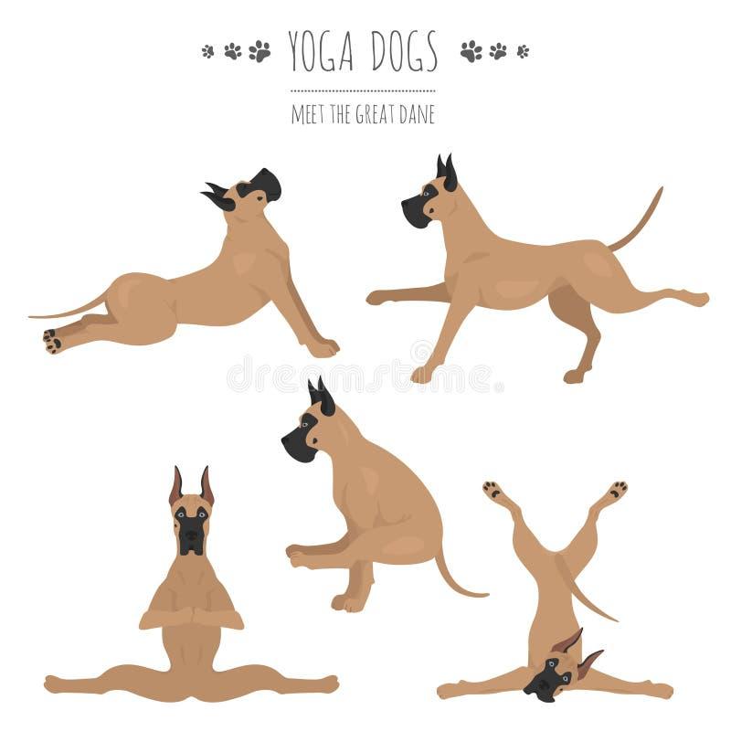 Poses e exerc?cios dos c?es da ioga Clipart de great dane ilustração stock