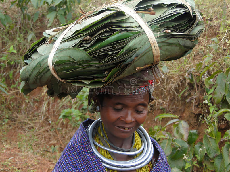 Poses tribais da mulher de Bonda para um retrato foto de stock