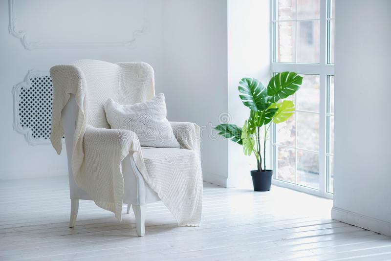 Posh white interior concept: white armchair with a pillow and woolen blanket and green house plant in tub near big window royalty free stock images