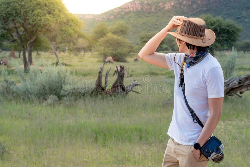 Posição asiática do viajante do homem no safari que olha animais dos animais selvagens fotos de stock royalty free