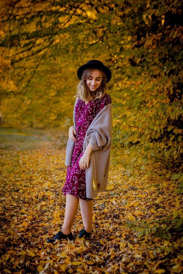 Posição bonita da mulher elegante em um parque no outono, conceito da queda imagem de stock royalty free