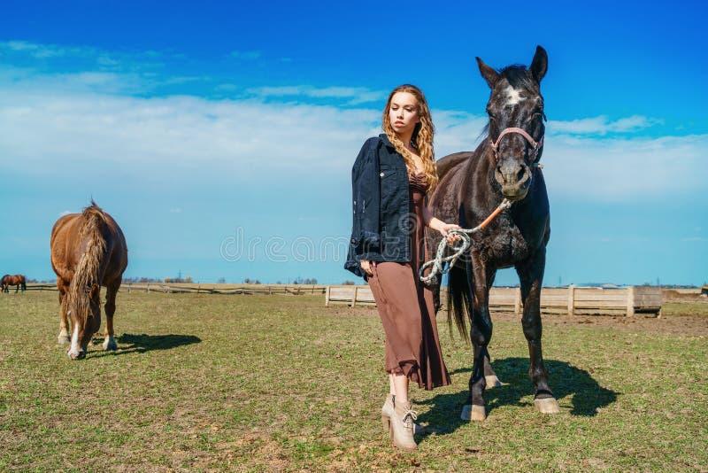 Posição bonita da mulher em um campo com um cavalo fotos de stock